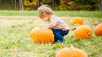 Stacy's Favorite Things About  Fall in Woodstock