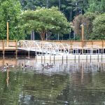 Dupree Park